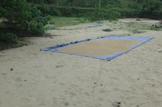 tasa! riis kuivab.