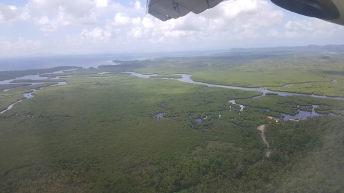 vaade enne maandumist, kena mangroovisalu