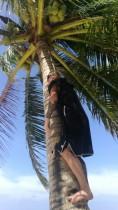 ja mina ronisin kookospalmi otsa (peaaegu)