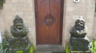 ilus uks