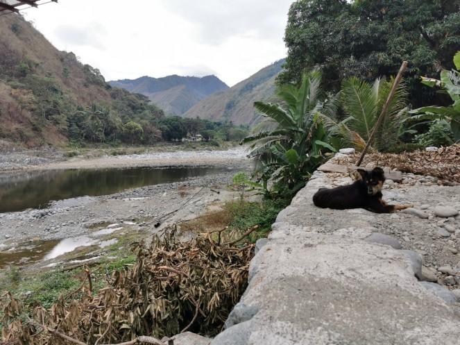 kore ja jõgi